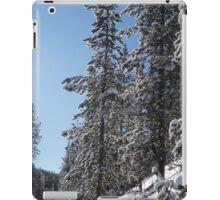 Montana Trees iPad Case/Skin