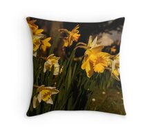 Daffodils in Dorchester Throw Pillow