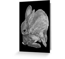 Rabbit Grooming Greeting Card
