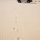 Footprints... by Sylvia Wu