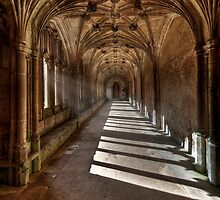 Lacock cloisters by greenbunion
