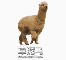 Grass Mud Horse by suranyami