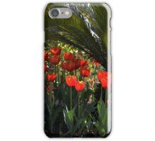 Tulip Row Under a Palmetto Tree iPhone Case/Skin