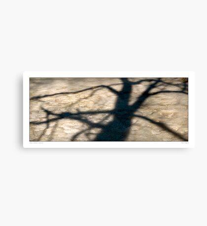 Tree shadow  abstract Canvas Print