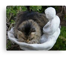 My new bed mom? Canvas Print