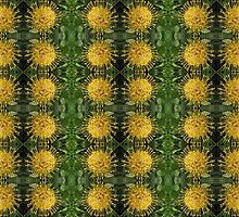 Leucospermum conocarpodendron motif by Lee Jones