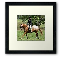 Working Canter Framed Print