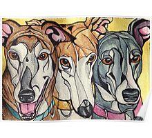 Greyhound Trio: HeartFULL Pet Portrait Poster