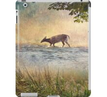 White Tail Deer Touting the Water - Parc National Mont Tremblant iPad Case/Skin