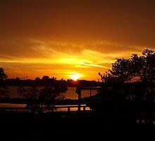 Bent on amber by ♥⊱ B. Randi Bailey
