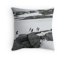 Around Throw Pillow