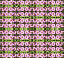 Oxalis motif by Lee Jones