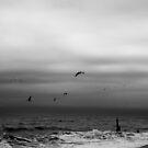 Dark Sea #01 by David Hawkins-Weeks