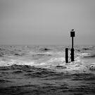 Dark Sea #04 by David Hawkins-Weeks