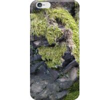 Moss on the rock iPhone Case/Skin