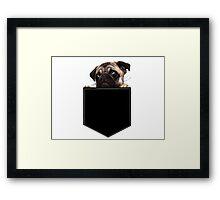 Pug Pocket Framed Print