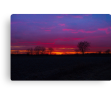 Sunset and the trees Canvas Print