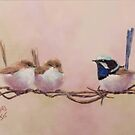 Superb Fairy Wrens - On the Wire by JulieWickham