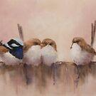 Superb Fairy Wrens by JulieWickham