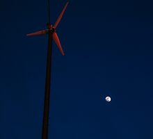 Tilting at Windmills by Timothy  Ruf
