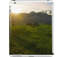 Cows in a Paddock A iPad Case/Skin