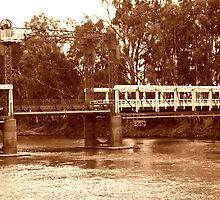 bridge on the murray by Steve Scully