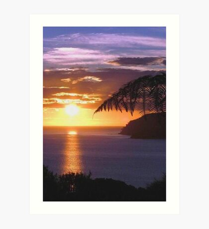 Sunset over Tryphena harbour, Great Barrier Island, New Zealand. Art Print