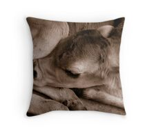 Newborn Throw Pillow