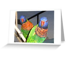 Paying Total Attention Greeting Card