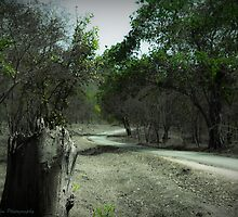 Road To Perdition by Saikat Babin Biswas
