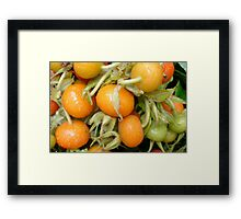 Tomatoes in Amsterdam Market Framed Print