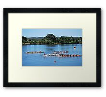Dragon Racing - getting lined up to Start !!! Framed Print
