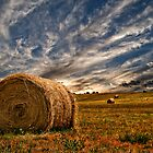 Evening Bales. by Victor Pugatschew