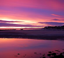 Pink Dawn by Jim Robertson
