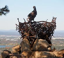 Eagle on the Nest, National Arboretum, Canberra, Australia. by kaysharp