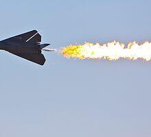 Australian Airshow 2009, F111 - Clasic Dump by Paul Golz