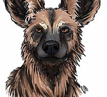 African wild dog  by dragongirl222