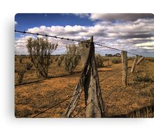 Saltbush Country Canvas Print