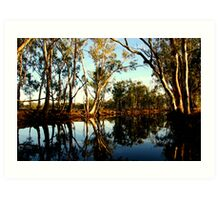 Red Gums over the Billabong Barmah Forest Vic Art Print