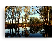 Red Gums over the Billabong Barmah Forest Vic Canvas Print