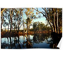 Red Gums over the Billabong Barmah Forest Vic Poster