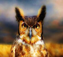 Great Horned Owl by Gypsykiss
