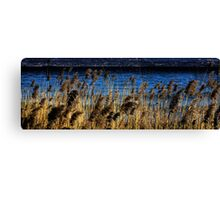 Lake of Garda's bookmark Canvas Print