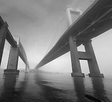 Tamar bridges black and white study by graham1