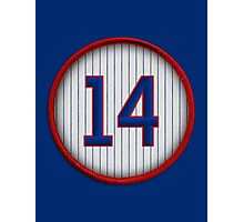 14 - Mr. Cub Photographic Print