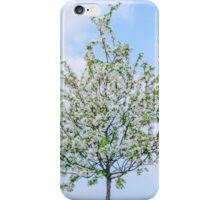 Spring - Happy Easter iPhone Case/Skin
