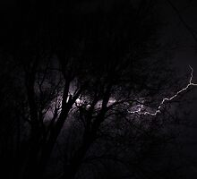 Lightning Tree by StonedOgraphy