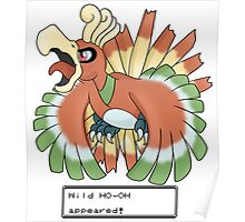Wild Ho-Oh Appeared! Poster