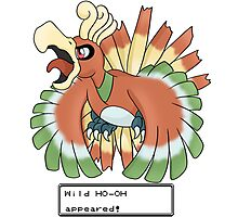 Wild Ho-Oh Appeared! Photographic Print