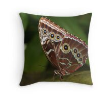 Close-up of a Common Blue Morpho Butterfly with Folded Wings Throw Pillow